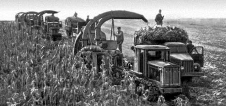 фото колхозы техника люди обоев клеят составы
