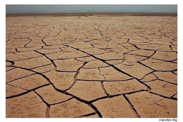 Пустыня по пути от Каламы в Икике (Чили). Фото: О. Лопаткин (2006).