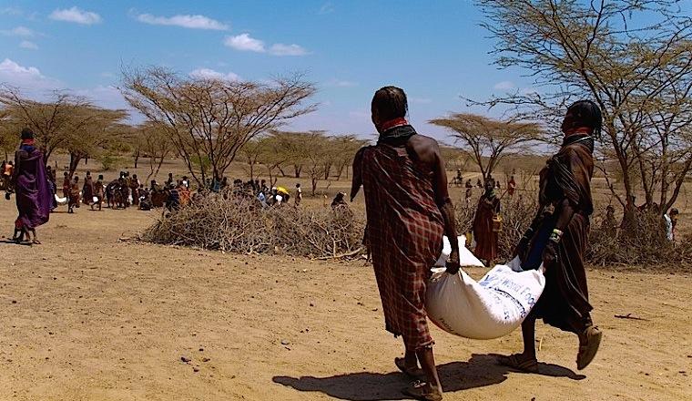 Африка кормит