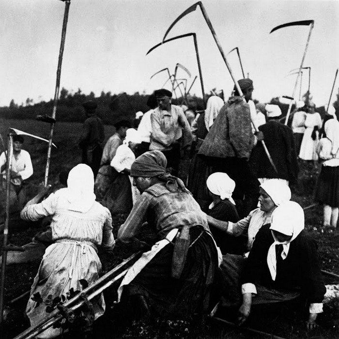 Сбор урожая. Россия.1910-е.